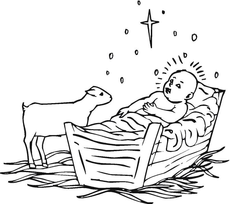 Lamb and Baby Jesus