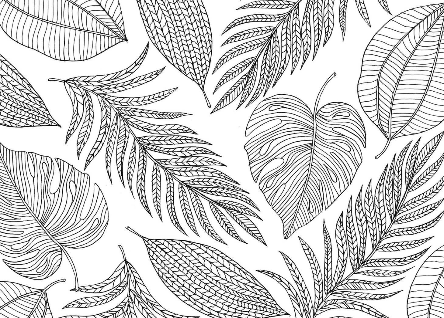 Leaves Mindfulness