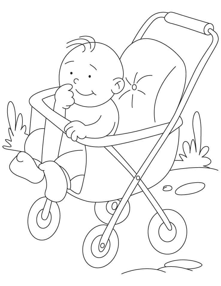 Little Boy in Stroller