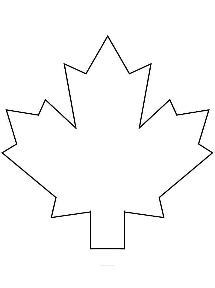 Maple Leaf 1