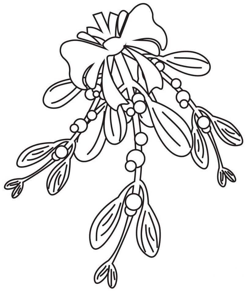 Mistletoe 7