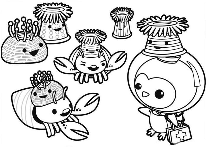 Octonauts Characters