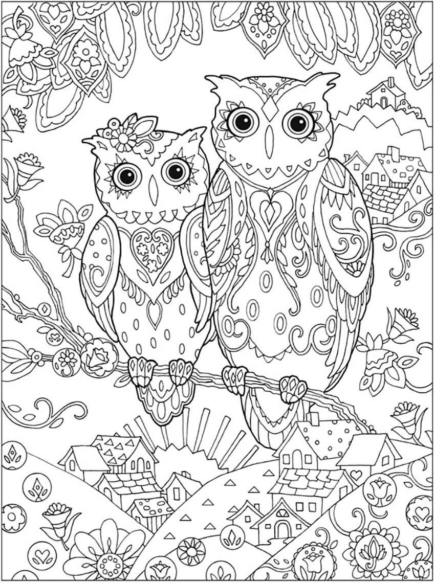 Owl Mindfulness