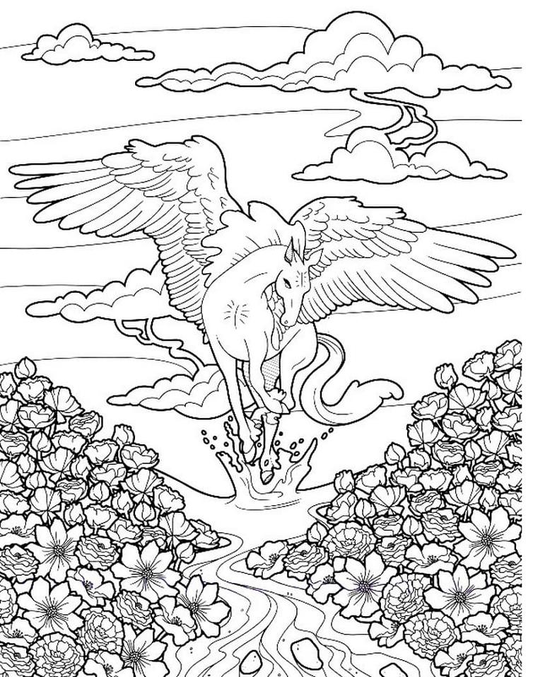Pegasus Splashing