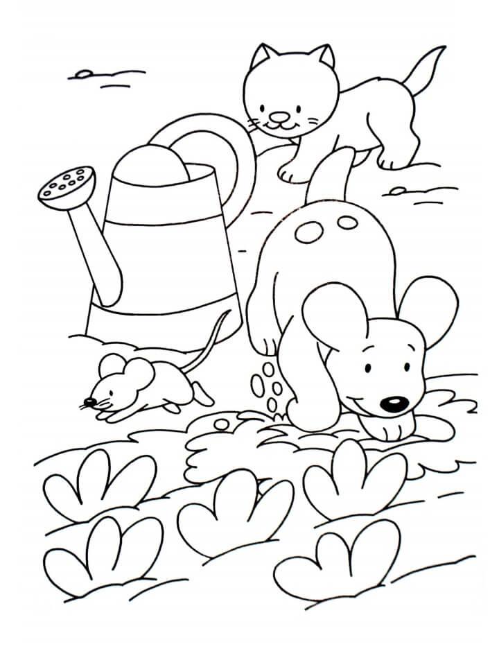 Pets in the Garden
