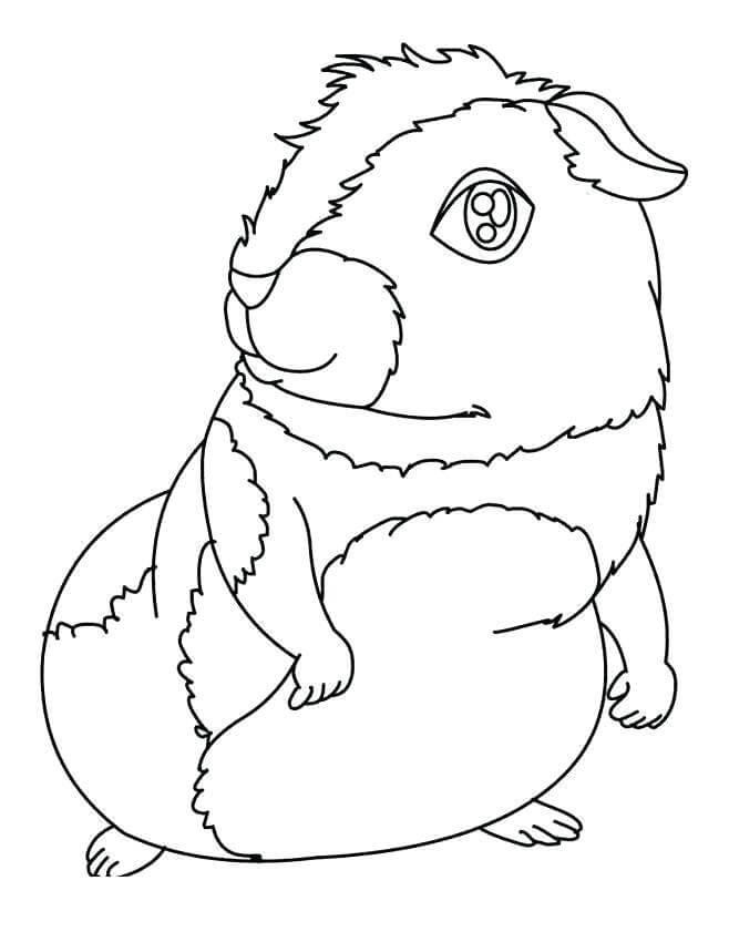 Printable Guinea Pig