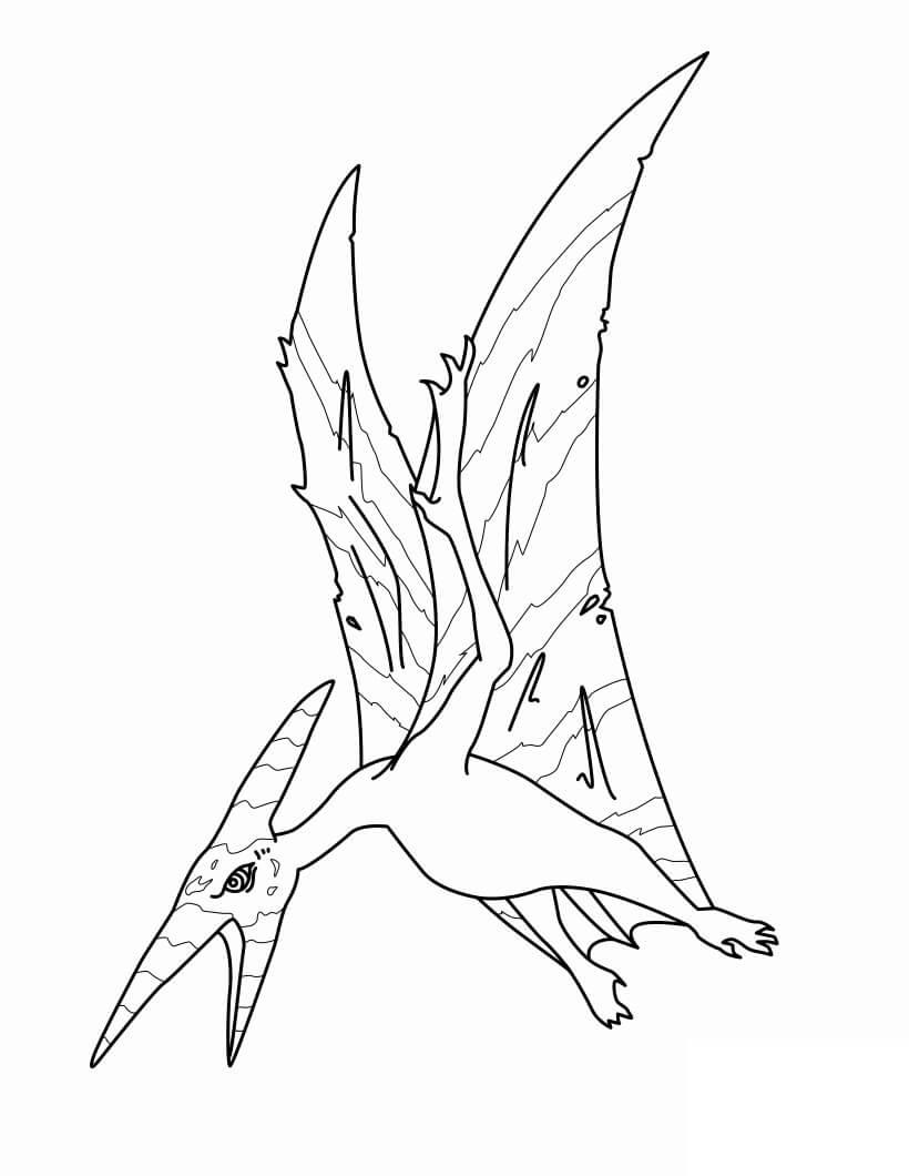 Pterodactyl 6