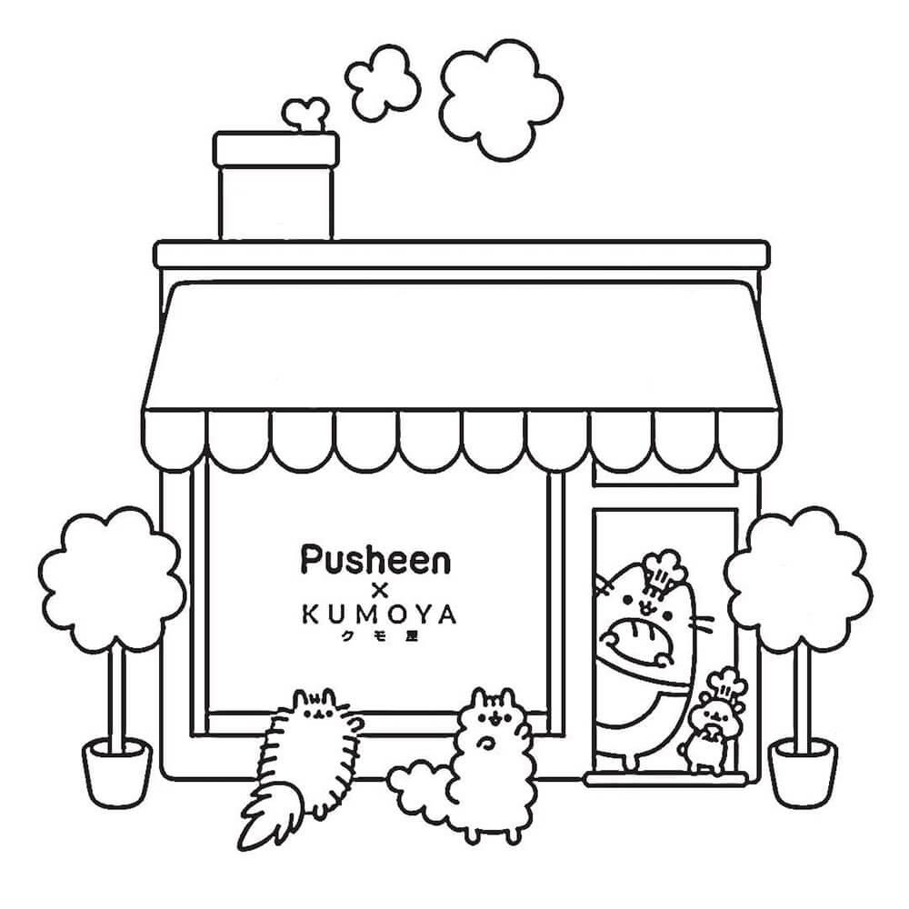 Pusheen House