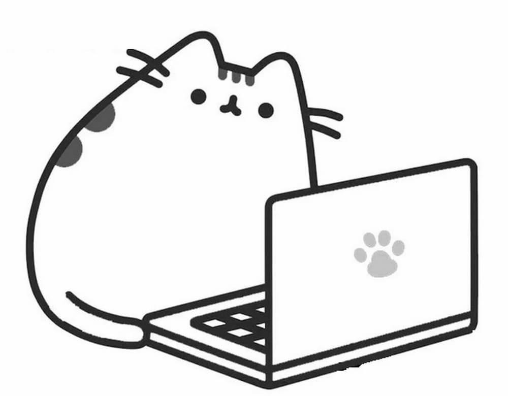 Pusheen Working With Laptop