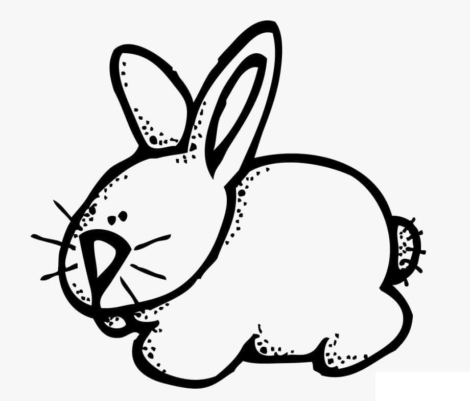 Rabbit Melonheadz