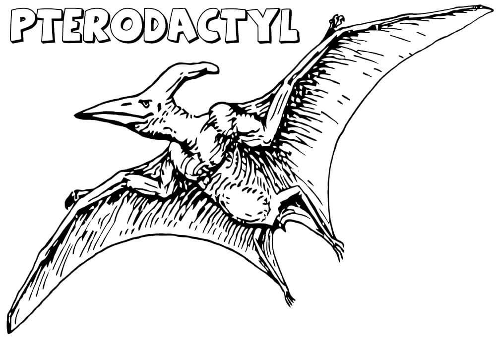 Realistic Pterodactyl