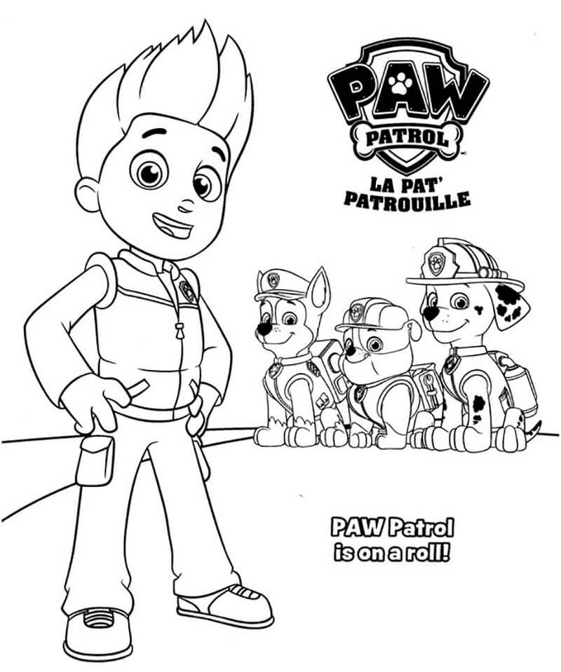 Ryder Paw Patrol 5