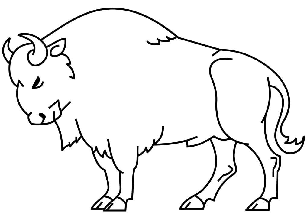 Simple Bison