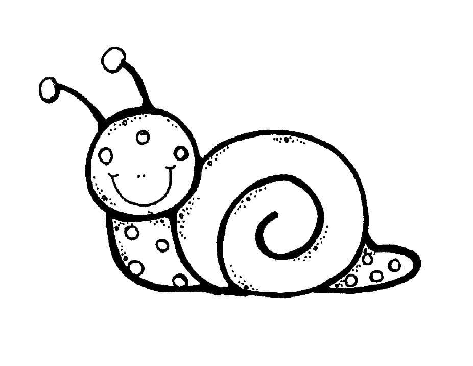 Snail Melonheadz