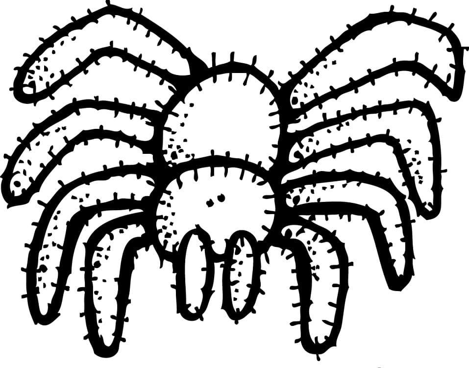 Spider Melonheadz