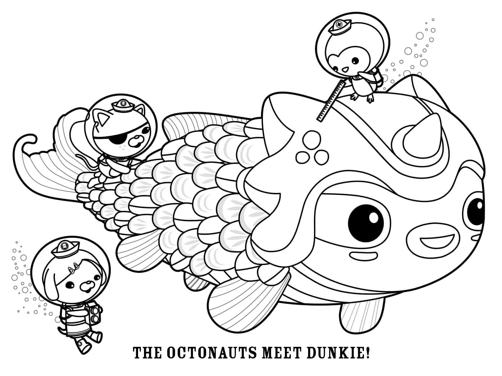 The Octonauts Meet Dunkie