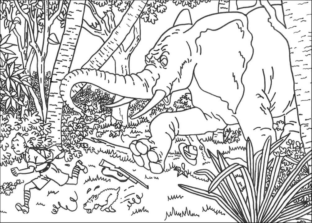 Tintin Running from Elephant
