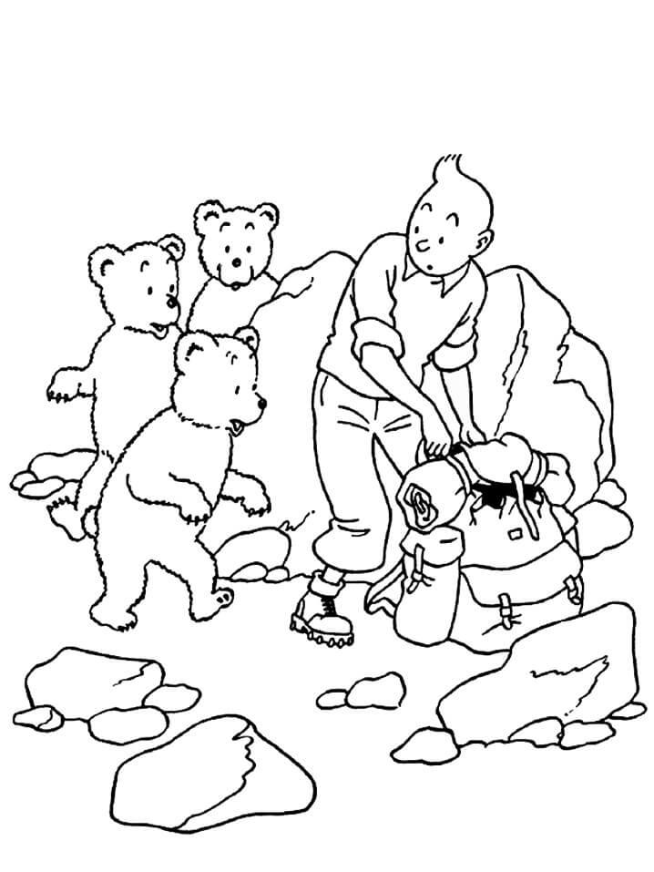Tintin and Bears
