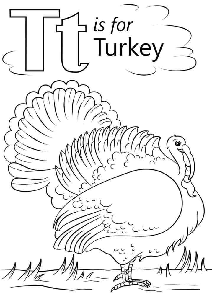 Turkey Letter T