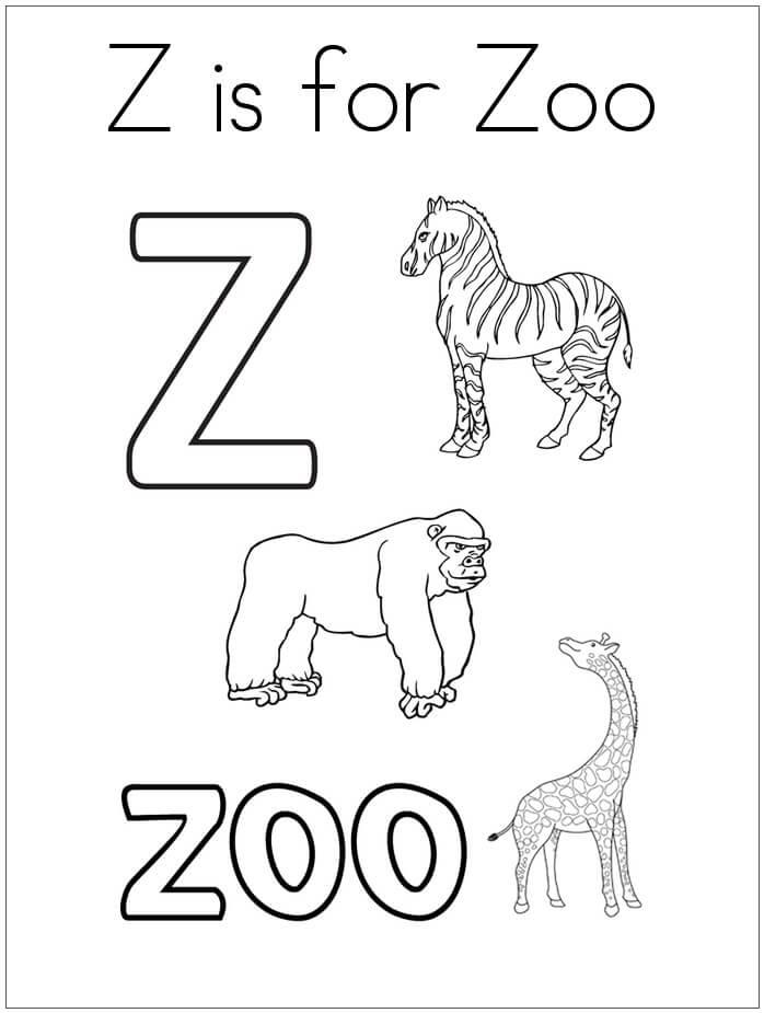 Zoo Letter Z 1