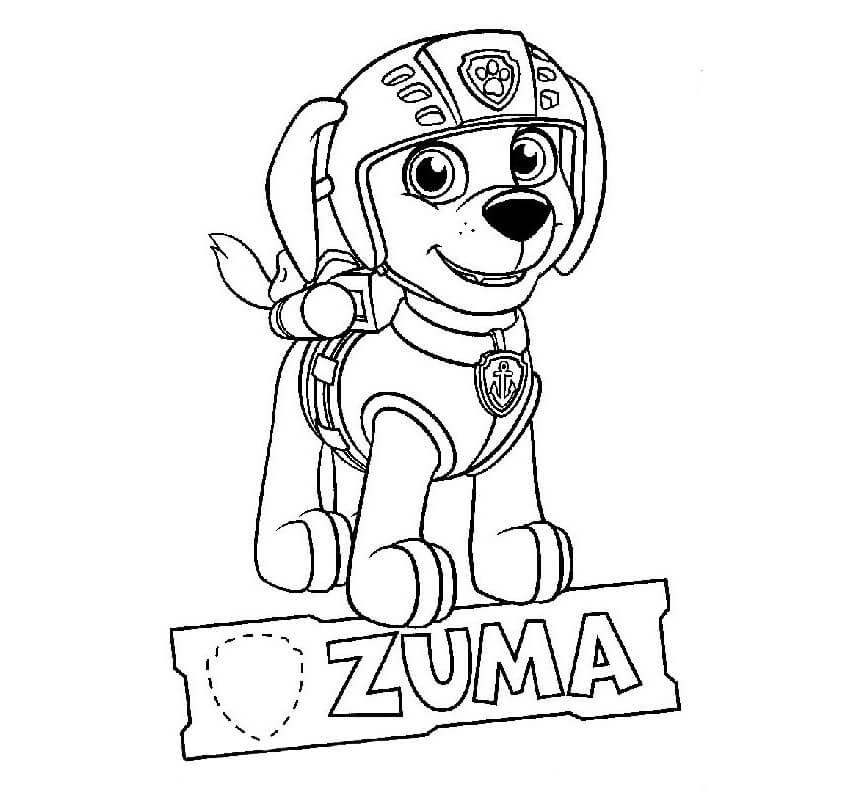Zuma Paw Patrol